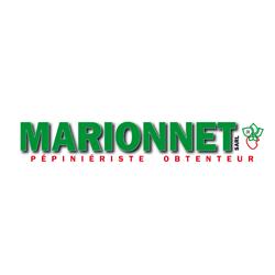 Marionnet